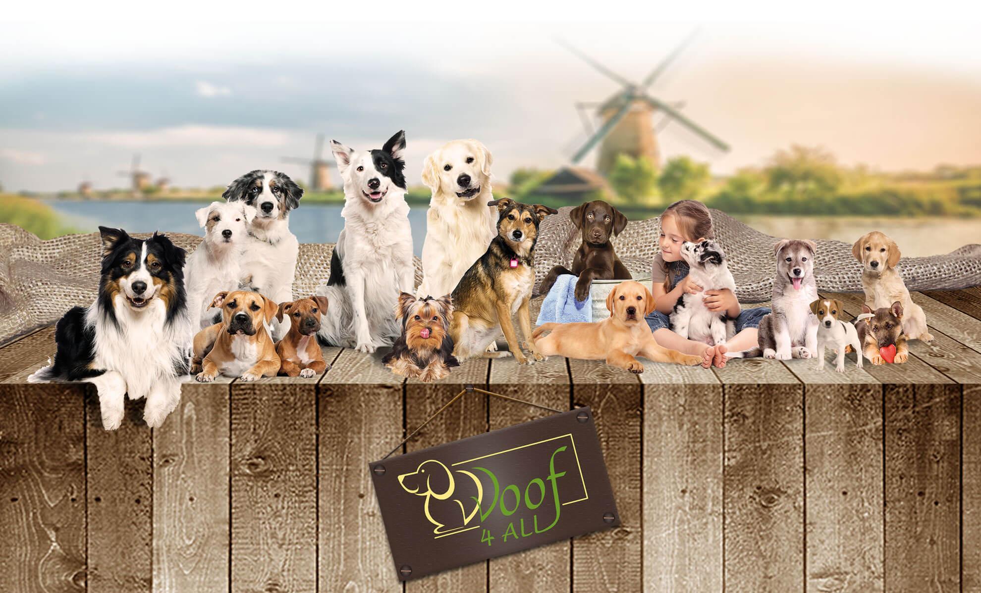 Woof 4 All - Hoog kwalitatief & natuurlijk hondenvoer
